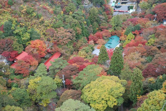 六甲山から有馬温泉へ 紅葉が眼下に広がる空中散歩!
