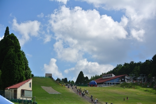 夏休みの自由研究は六甲山にお任せ!
