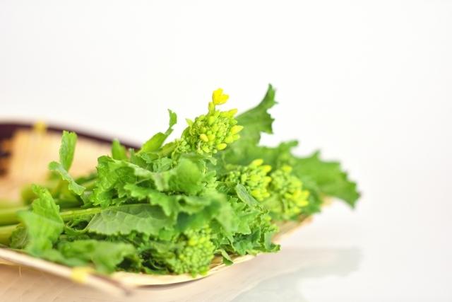 春の訪れを感じさせてくれる菜の花を食卓へ